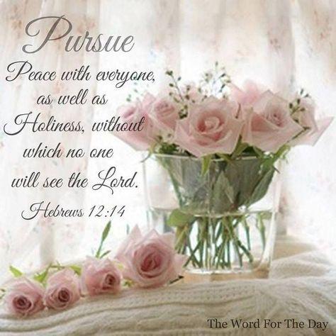 Hebrews12-14.jpg
