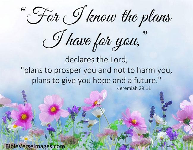 Jeremiah29-11