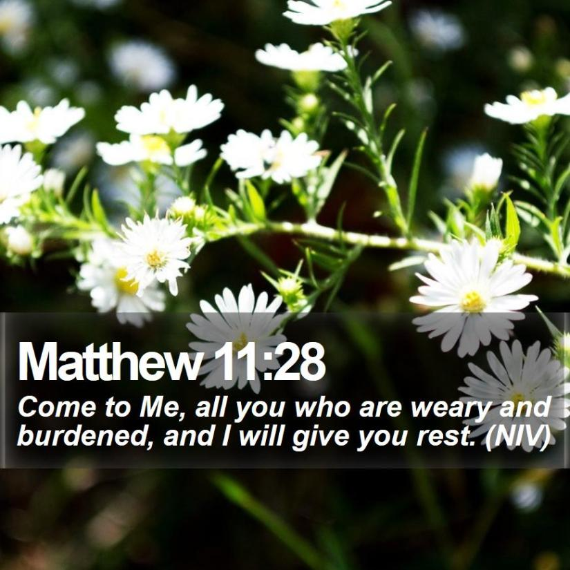 matthew-11-28-come-to-me-all-you-who-are-weary-and-burdened-and-i-will.jpg