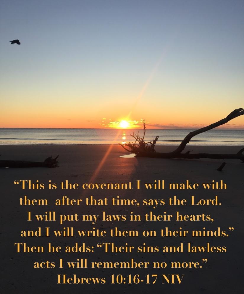 Hebrews10-16-17NIV