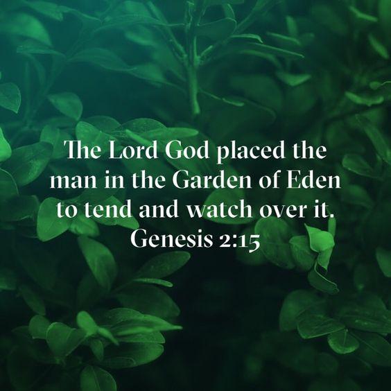 Genesis2-15