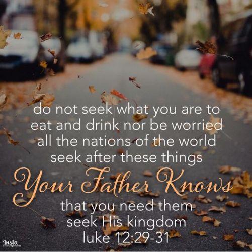 Luke12-29-31